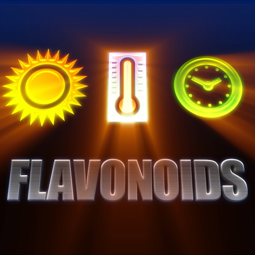 Flavonoid_Fall